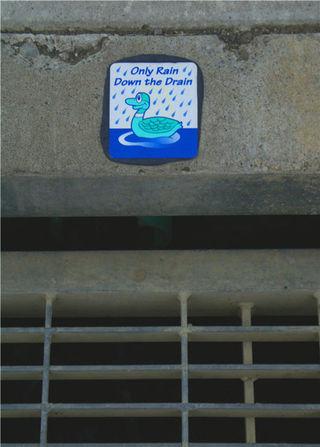 11_08 rain drain