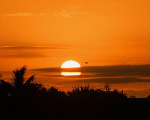 05_09 treasure island sunrise cropped 8x10 to sun