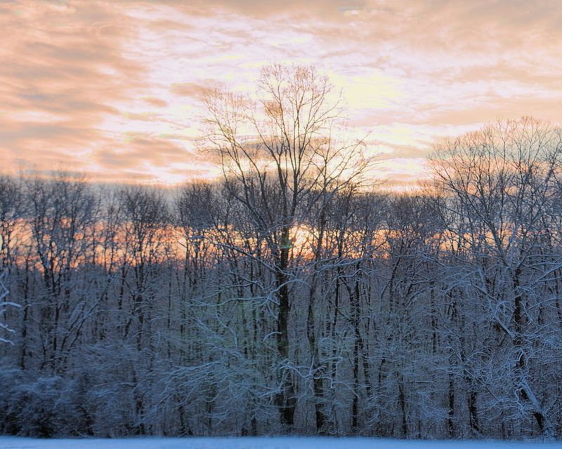 02_10 thumb snowy sunrise