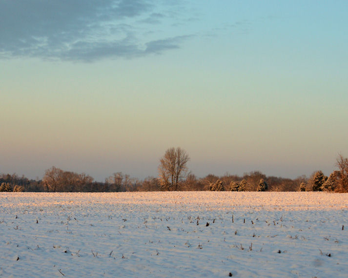 02_10 thumb sunrise across field