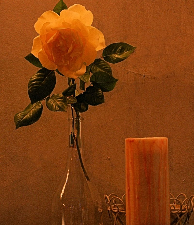 04_10 thumb rose and candle