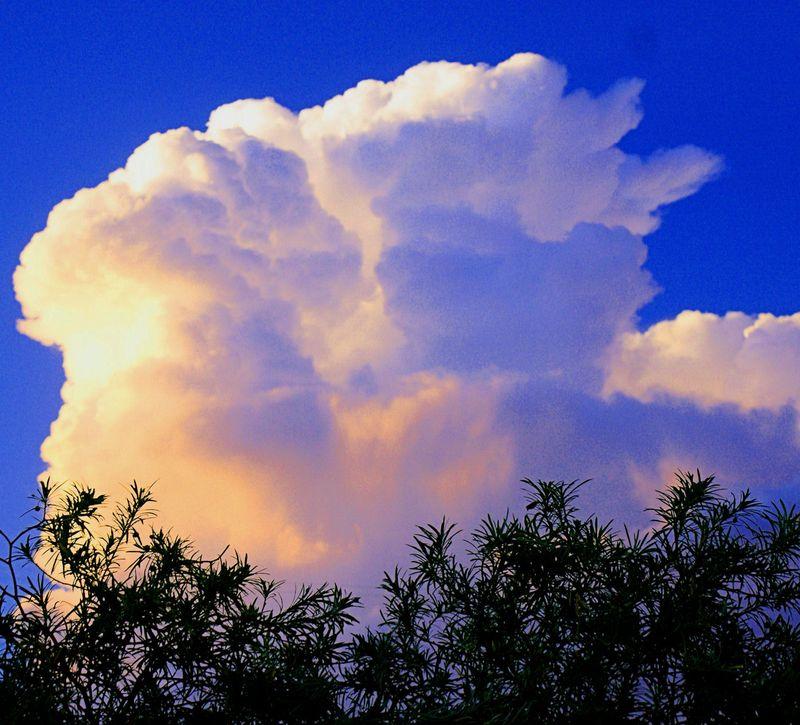 08_10 thumb evening cloud 2