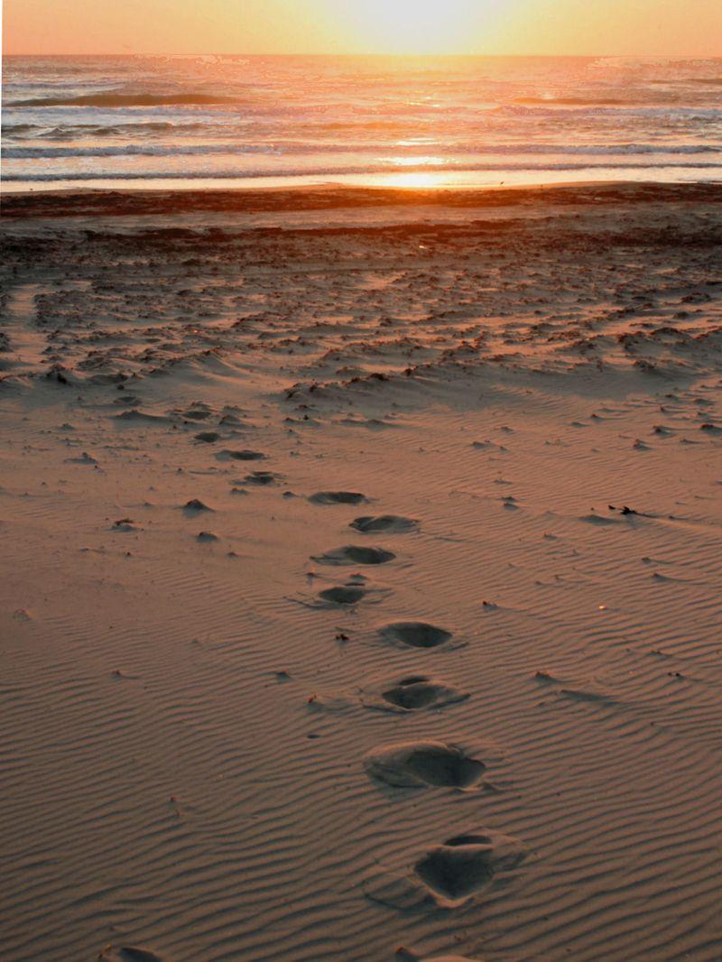 10_10 thumb footsteps to sunrise
