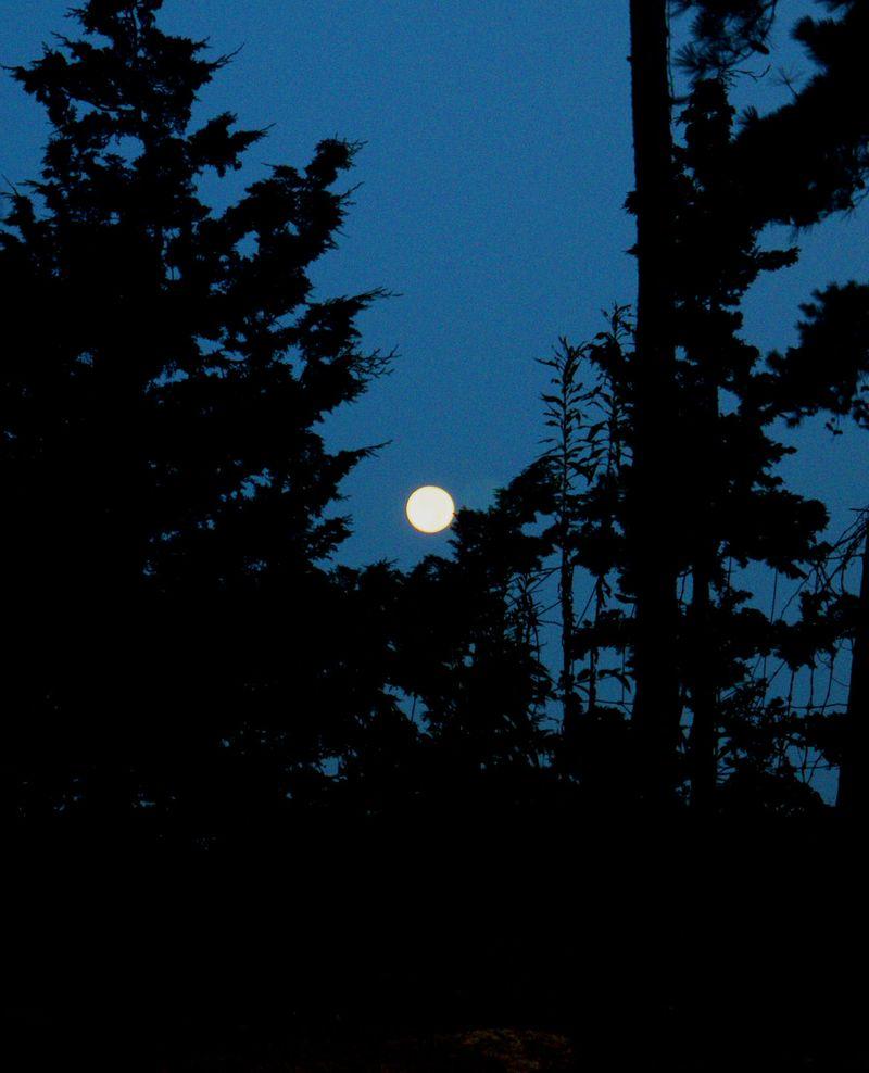 07_10 thumb morning moon 2