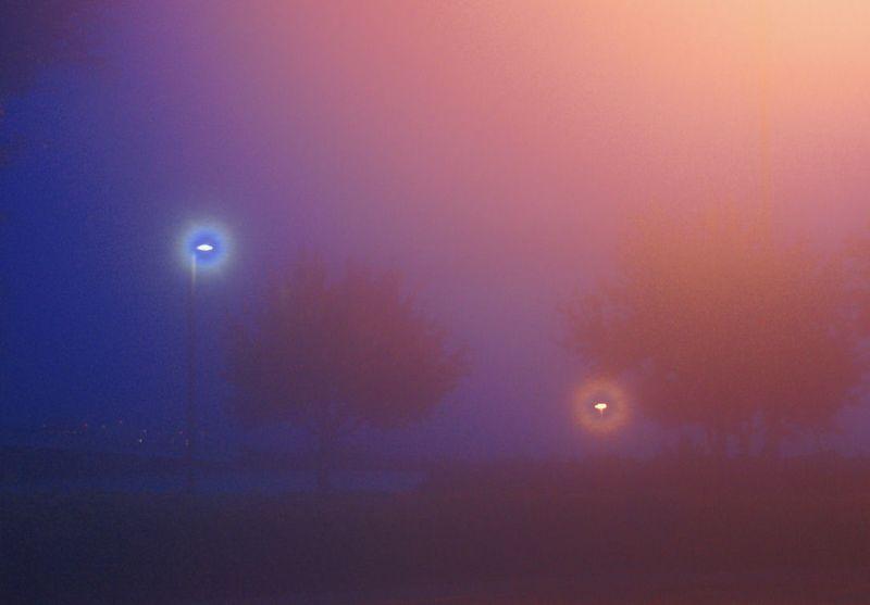 08_11 fl thumb foggy morning