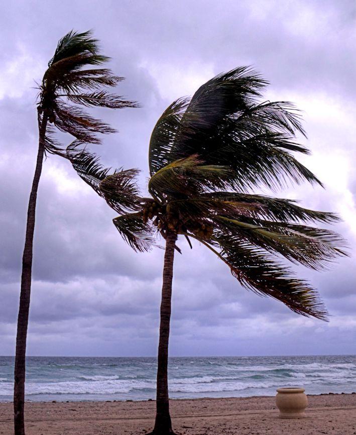 10_11 thumb windy beach single DSC03673_tonemapped