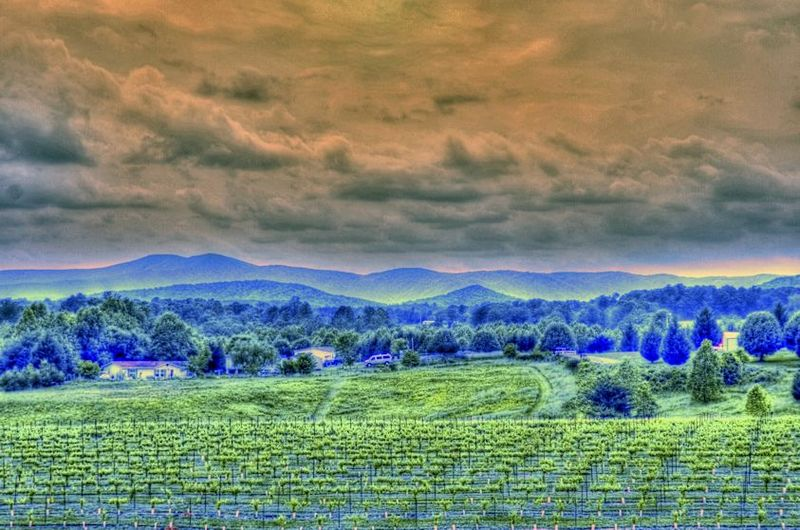 05_12 thumb winery and mtns DSC05252_3_4_tonemapped_tonemapped