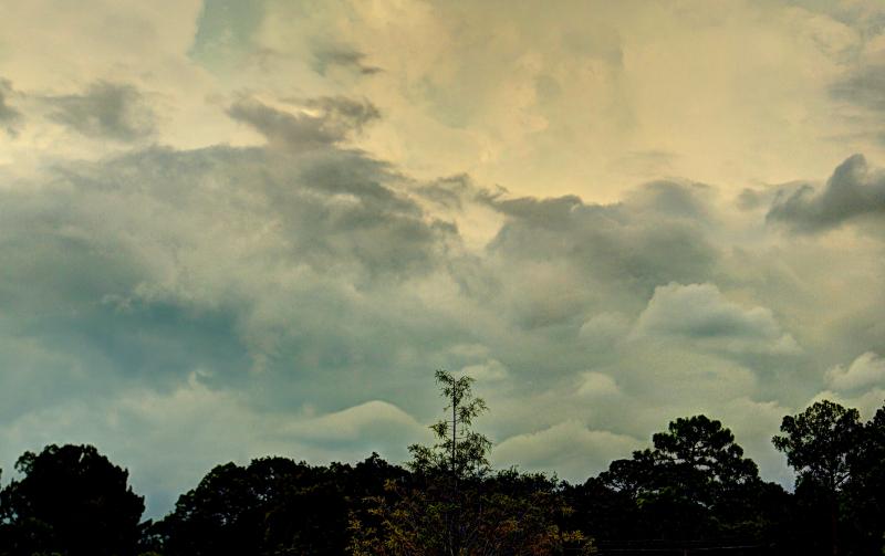 08_17 summer storm DSC04727_8_9_Painterly 5