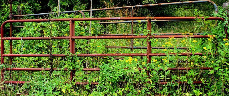 09_14 fencepost DSC00845 -1