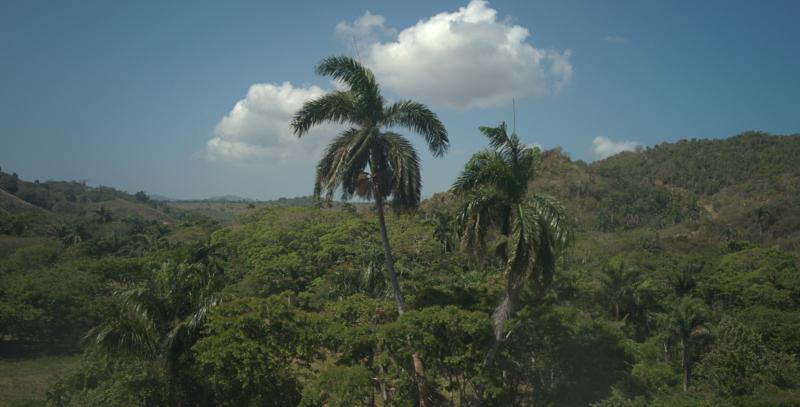 05_19 dominican republic 4 DXO_0557 -1