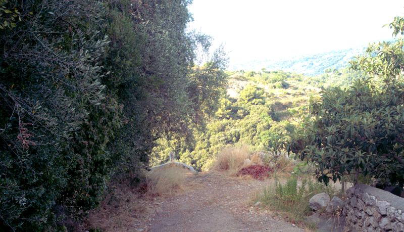 08_19 nice winery path DXO_0712 -1