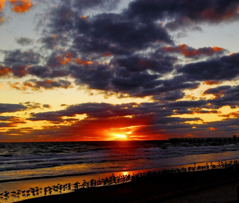 01_20 daytona sunrise DXO_0344