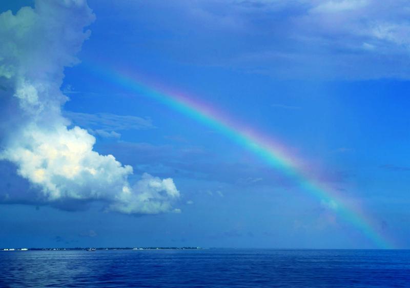 11_19 caribbean rainbow DSC05126