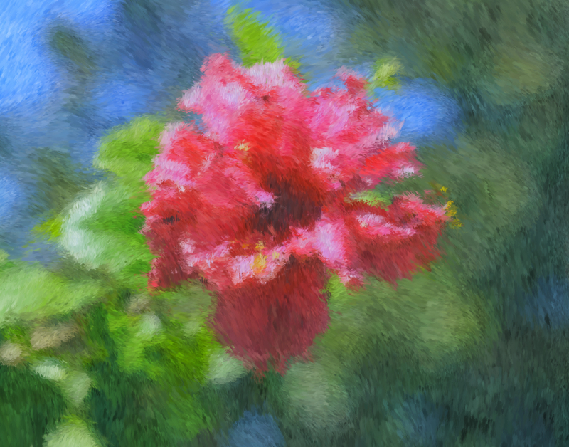 09_20 cedar key red flower impressionist DSC05912
