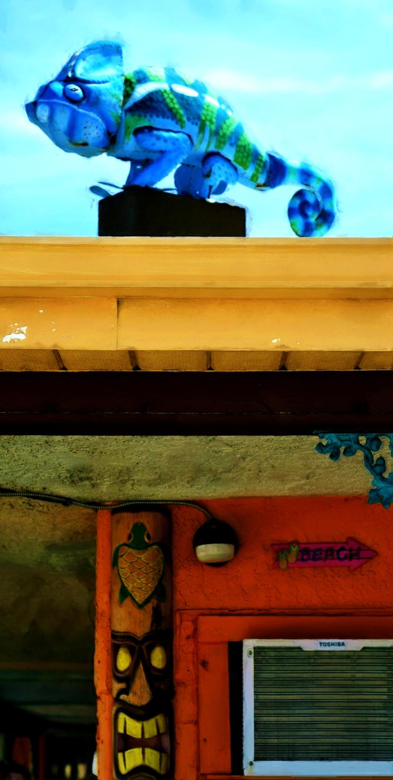 03_21 blue lizard and beach DSC06379 watercolor
