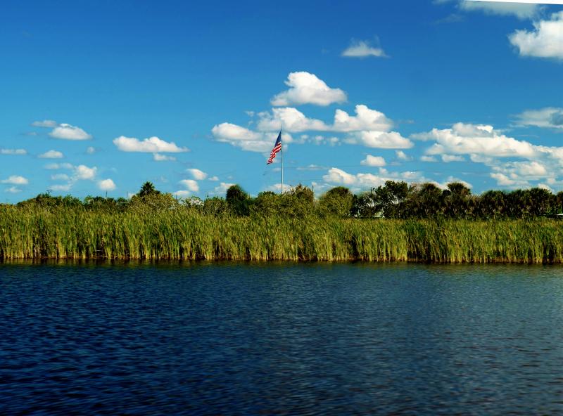 11_20 flag in the swamp DSC06148