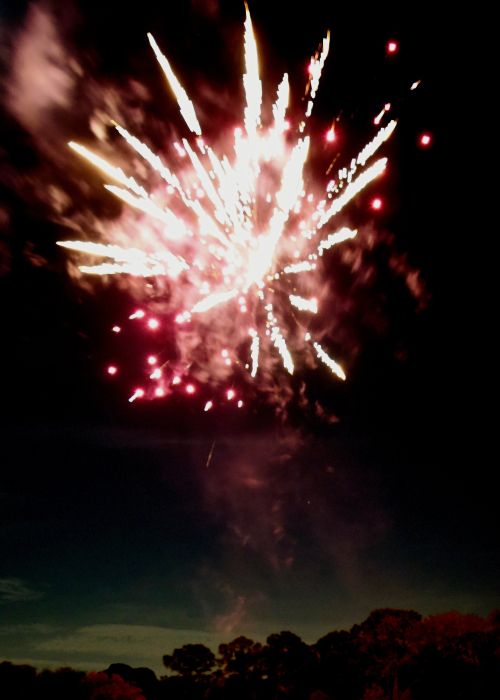 12_20 ny fireworks DSC06202