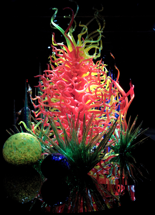 05_21 st pete chihuly DXO_0415 -1