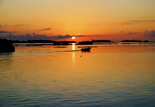 09_20 cedar key morning fishing DSC05836