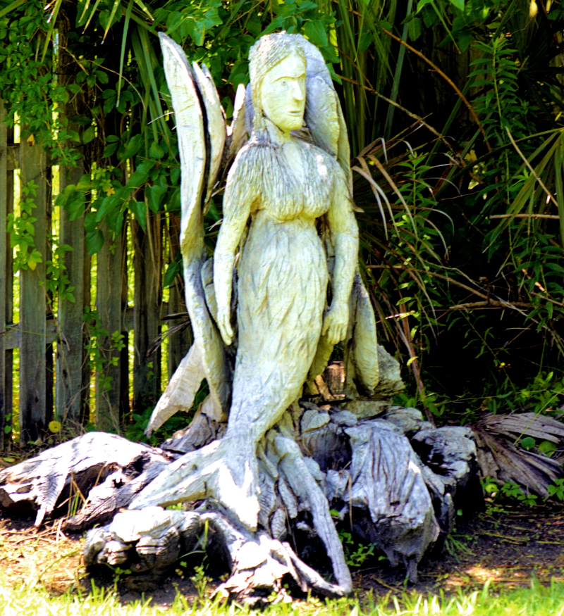 06_21 apalach stump mermaid DSC06792 -1