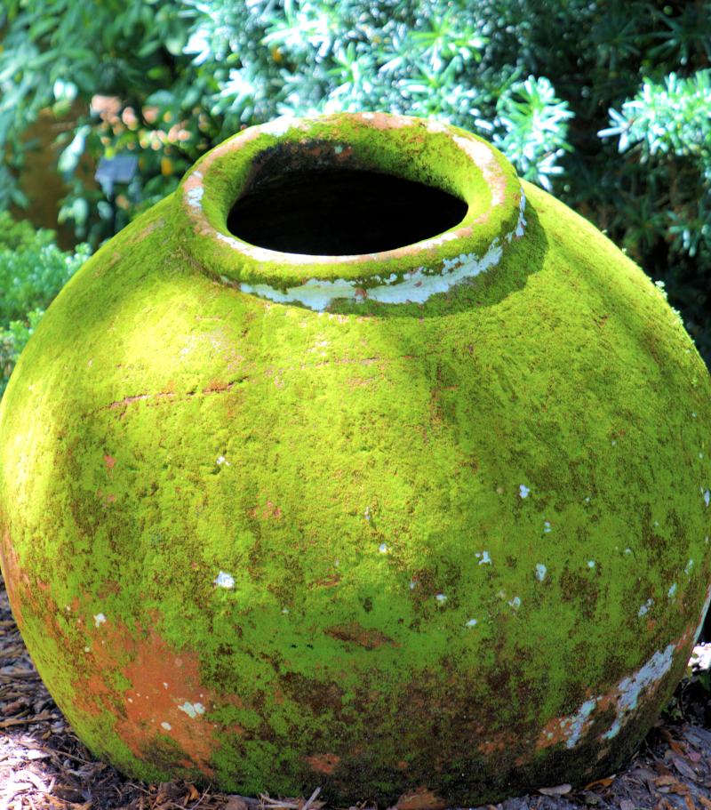 08_21 Bok Tower round pot DSC07056 -1