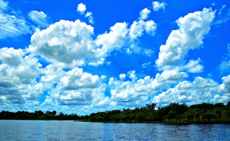 08_21 bayou scenic DSC06941_Detail